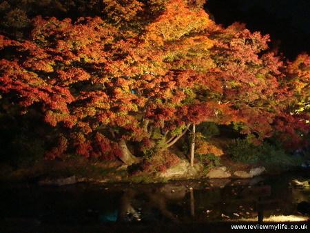 ritsurin gardens takamatsu at night 01