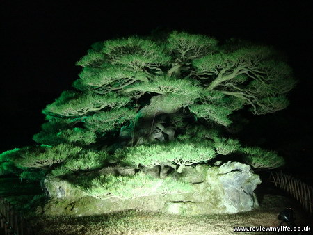 ritsurin gardens takamatsu at night 04