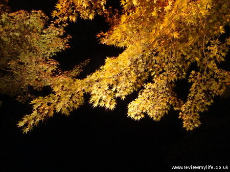 ritsurin gardens takamatsu at night 07