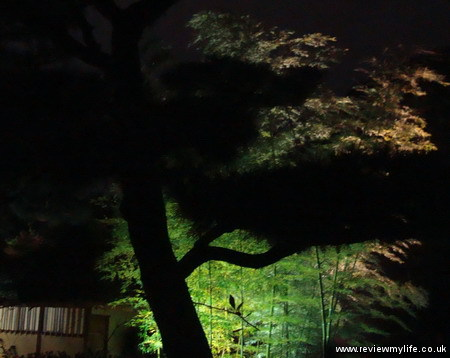 ritsurin gardens takamatsu at night 08