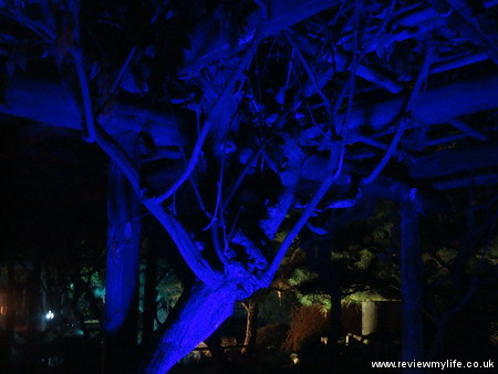 ritsurin gardens takamatsu at night 09